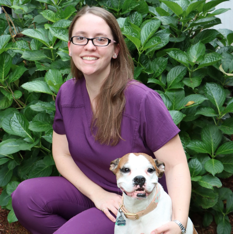 Our Veterinary Team In Reading Ma Reading Animal Clinic